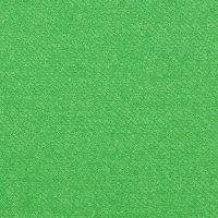 订货 绿色毛纺圈圈呢面料