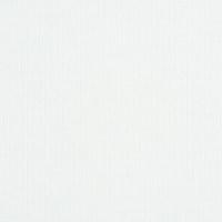 女装白色针织罗纹针织面料