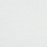 女装白色针织汗布面料