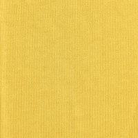 黄色针织汗布面料